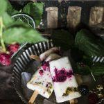 Gelato allo yogurt con more e frutto della passione